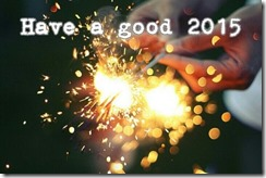 Have-A-Good-2015
